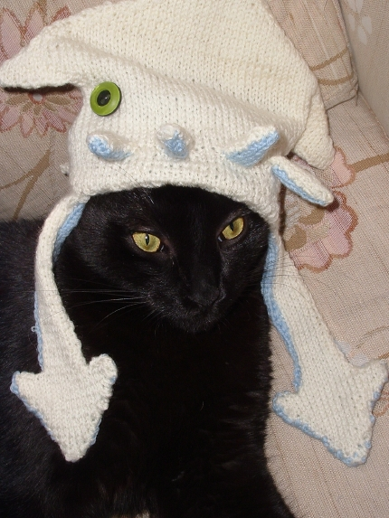 To Eat a Cat (also, with instructions for knitting a squid hat for your